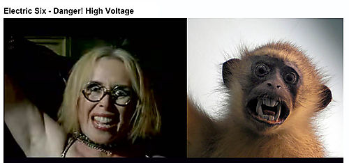 SAB_monkeylady