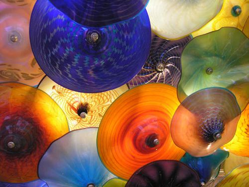 S.chihuly