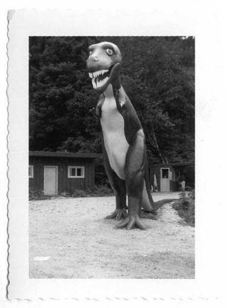 Dino_11