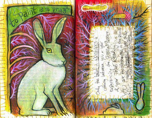 1.rabbit