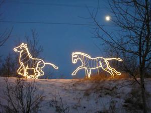 Light_horses