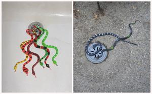 Snakes_on_a_drain