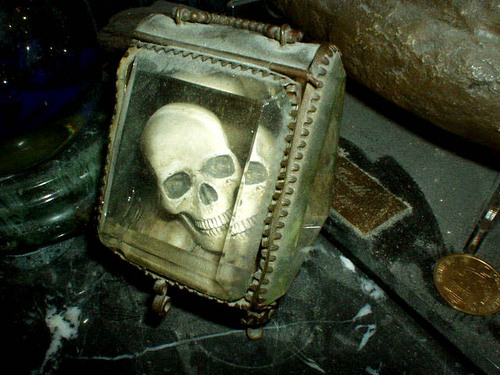 Skull in a crystal box