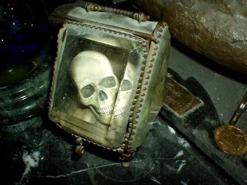 Skull in a crystal box