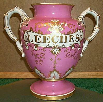 Pinkleech