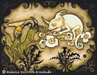 Albinochameleonbeeweb_1