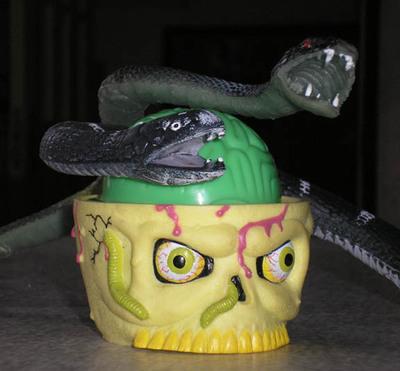 Snakesonabrain