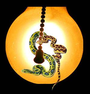 Snakespullchainweb
